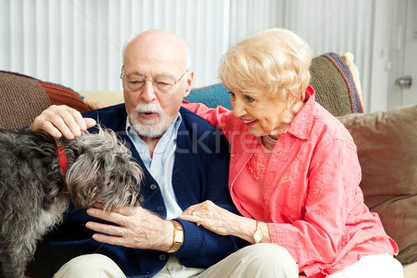 Stock fotó: Idős · pár · kutya · szerelmespár · otthon · imádnivaló · retkes