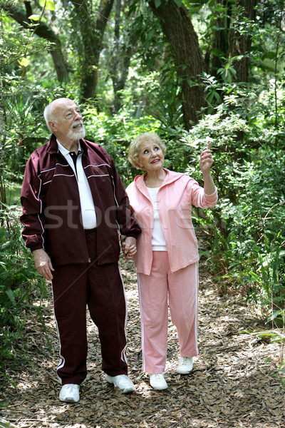 Active Seniors Walk in Woods Stock photo © lisafx