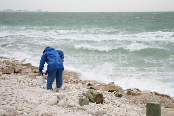 Foto d'archivio: Nido · uovo · pensione · persona · spiaggia