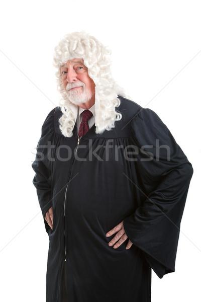 серьезный британский судья глядя парик Сток-фото © lisafx