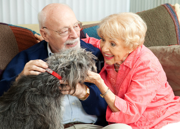 Seniors at Home with Their Dog Stock photo © lisafx