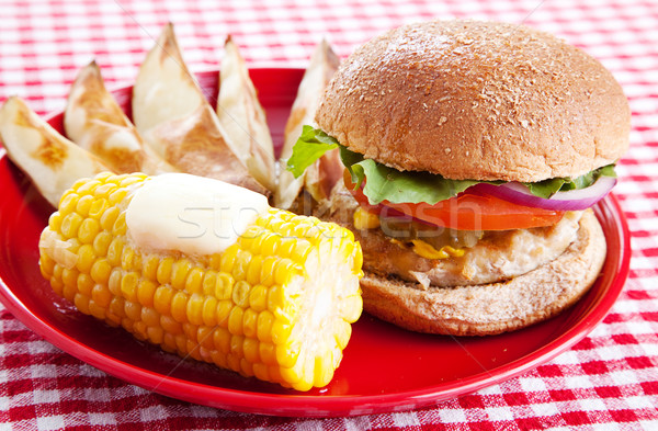 Healthy Picnic Meal Stock photo © lisafx