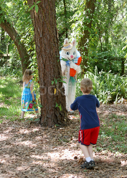 Easter Bunny Hide & Seek Stock photo © lisafx