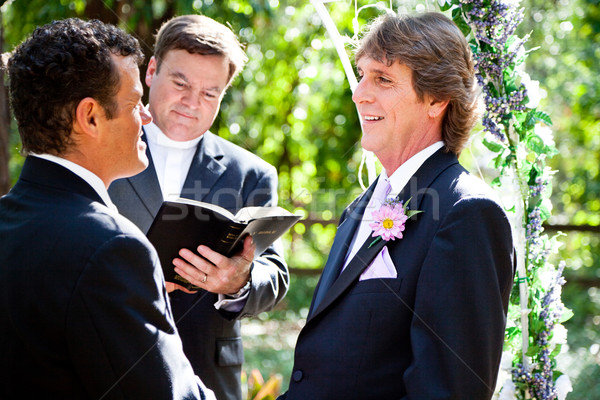 Gay Marriage - Expression of Love Stock photo © lisafx