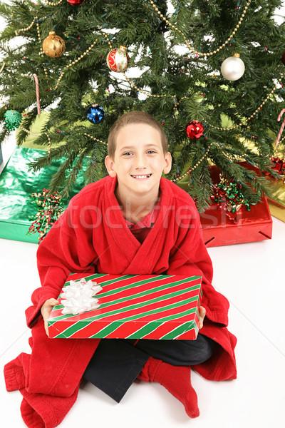 Kicsi fiú karácsonyfa ajándék aranyos karácsony Stock fotó © lisafx