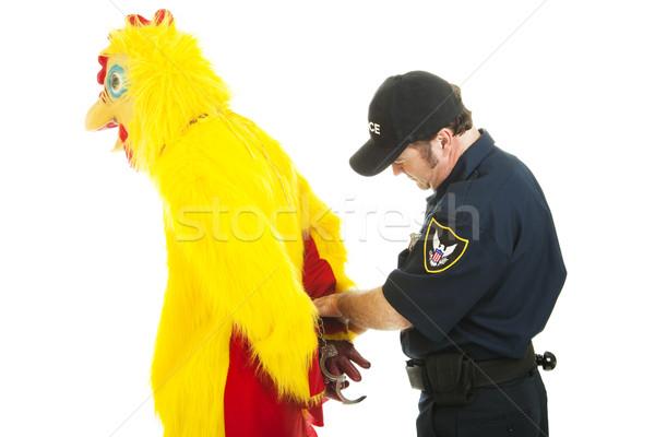 Tyúk férfi letartóztatás megbilincselve rendőrtiszt izolált Stock fotó © lisafx