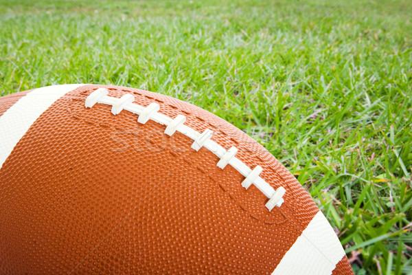 Football on the Field Stock photo © lisafx