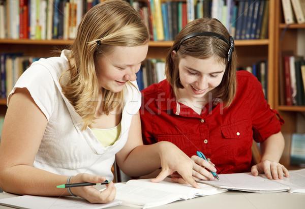Stok fotoğraf: Gençler · ödev · kütüphane · iki · güzel · genç