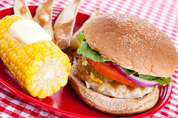 Healthy Turkey Burger Meal Stock photo © lisafx