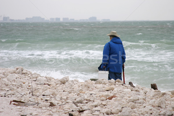 Solitary Beach Comber Stock photo © lisafx