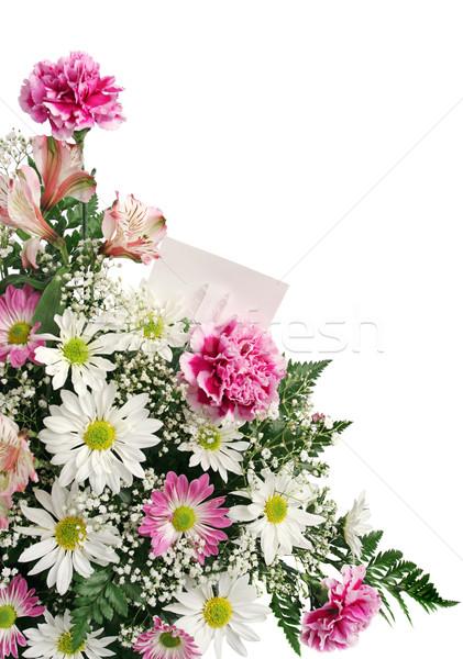 Flor frontera tarjeta de regalo vertical aislado blanco Foto stock © lisafx