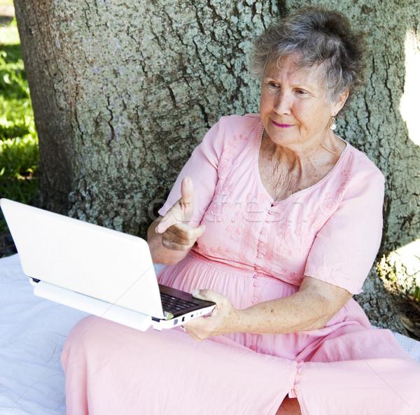 Hayal kırıklığına uğramış teknoloji kıdemli kadın netbook'lar bilgisayar Stok fotoğraf © lisafx