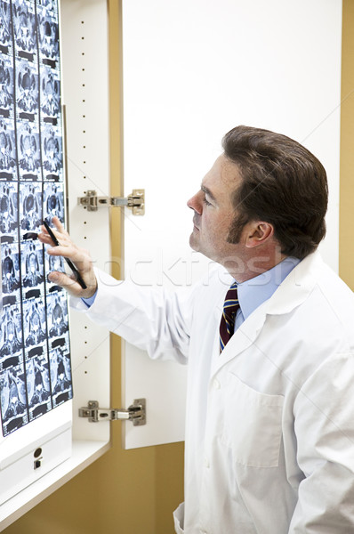 Doctor Examines Cat Scan Stock photo © lisafx