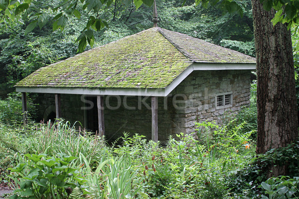 Cabin In Woods Stock photo © lisafx