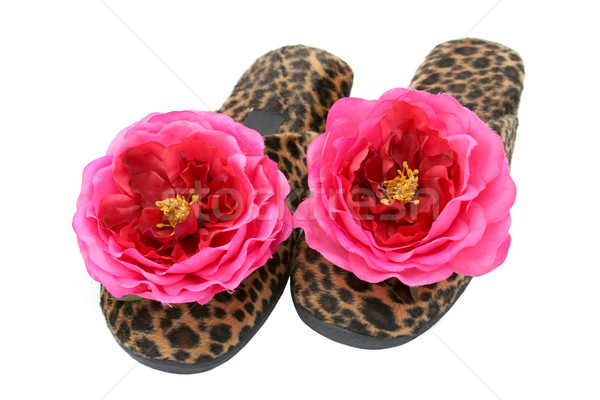 Glamorous Slippers Stock photo © lisafx