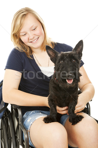 Mozgássérült lány kutyaféle barát csinos tinilány Stock fotó © lisafx