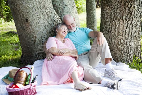 Perezoso día de verano pareja de ancianos relajante picnic parque Foto stock © lisafx