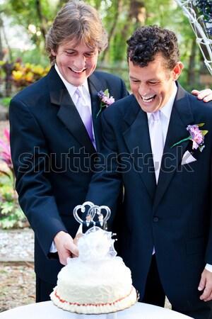 гей Свадебная церемония мужчины пару женат женщины Сток-фото © lisafx