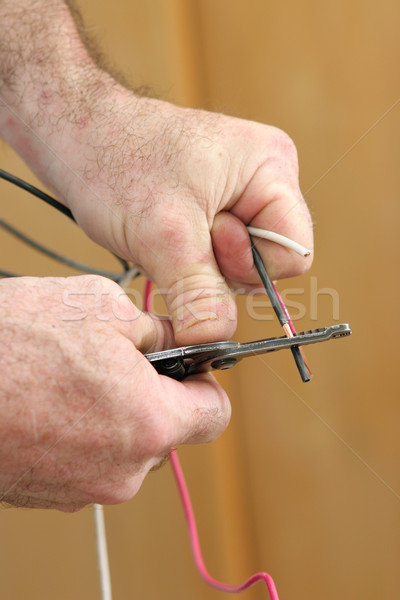 Stripping Electricial Wire Stock photo © lisafx