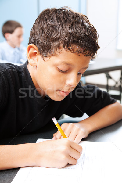 Intelligent Student Takes Test Stock photo © lisafx
