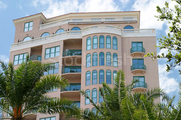 Tropikal güzel bulutlar ağaçlar sanat palmiye Stok fotoğraf © lisafx