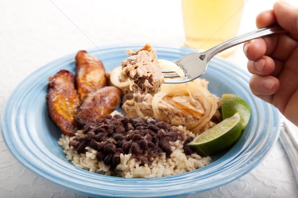 Falat kubai disznóhús közelkép darab marinált Stock fotó © lisafx