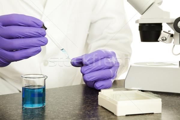 Scientist Hands Closeup Stock photo © lisafx