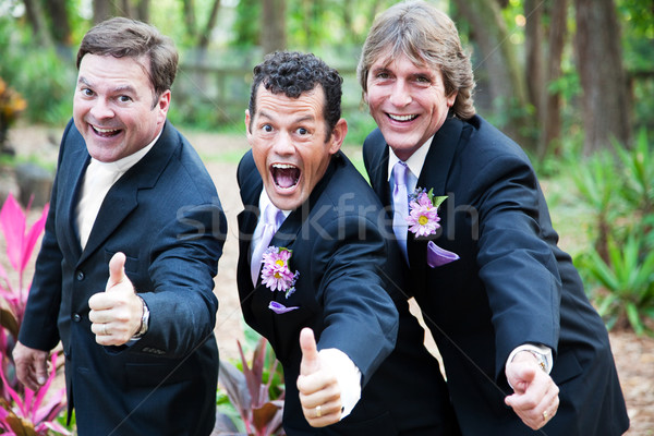 Gay Marriage Thumbs Up Stock photo © lisafx