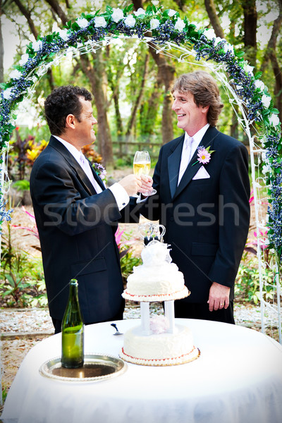 Stockfoto: Bruiloft · champagne · toast · twee · knap · homo