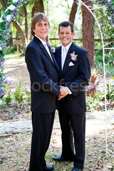 Gay Wedding Couple - In Love Stock photo © lisafx
