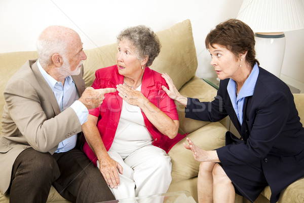 Couples Counseling - Argument Stock photo © lisafx