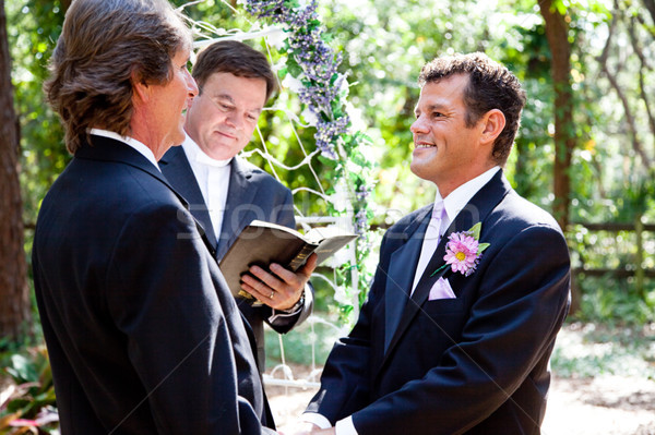 Gay Couple Getting Married Stock photo © lisafx