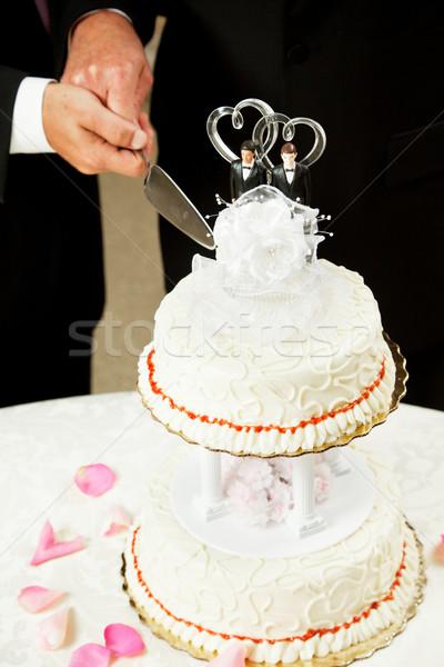 Gay Marriage - Cutting Wedding Cake Stock photo © lisafx