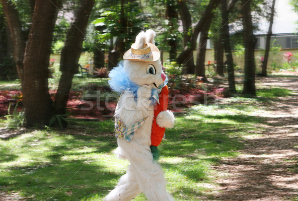 Easter Bunny On the Run Stock photo © lisafx