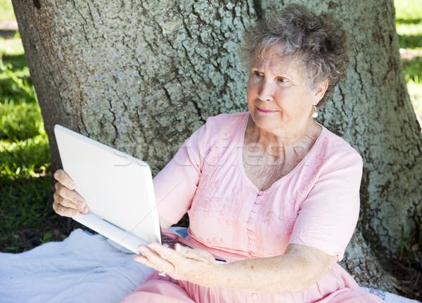 Hayal kırıklığına uğramış bilgisayar kıdemli kadın netbook'lar dizüstü bilgisayar Stok fotoğraf © lisafx