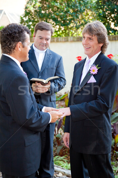 Gay Couple Married at Last Stock photo © lisafx