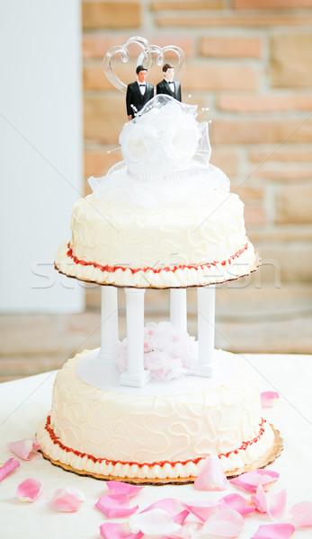 ウェディングケーキ ゲイ カップル 美しい 2 先頭 ストックフォト © lisafx