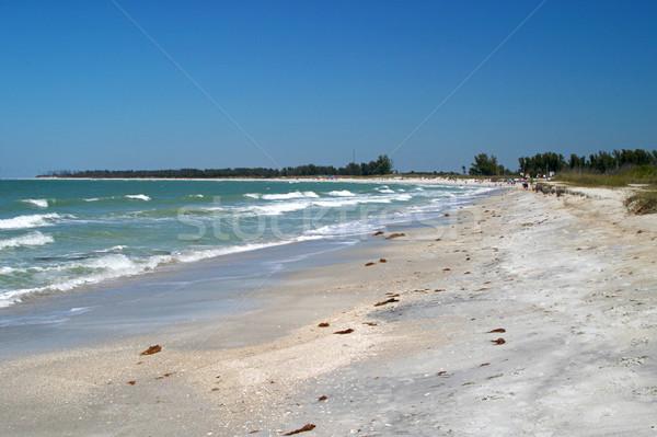 Florida Beach Stock photo © lisafx