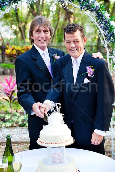 Twee cake bruiloft knap homo Stockfoto © lisafx