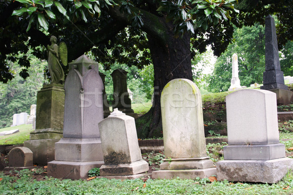 Stock photo: Tombstones in Cemetary