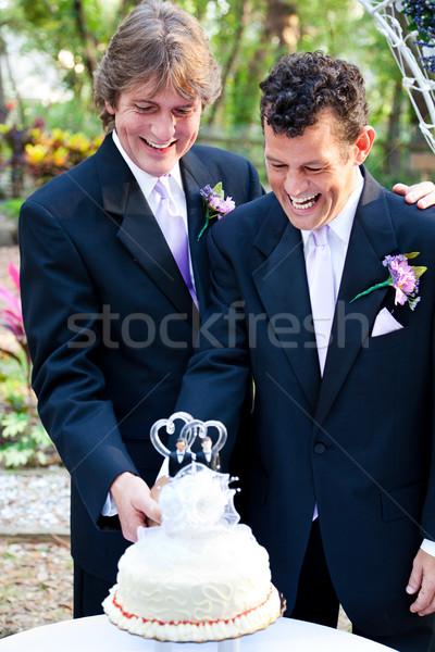 Homohuwelijk cake samen twee gelukkig Stockfoto © lisafx