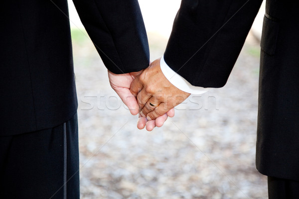 Gay Marriage - Holding Hands Closeup Stock photo © lisafx