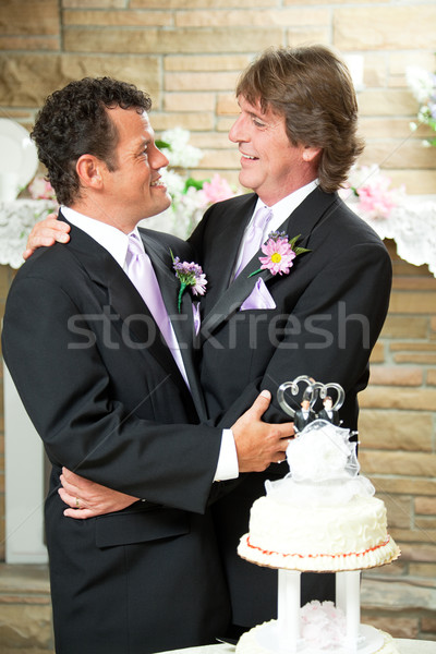 Gay Couple - Committed For Life Stock photo © lisafx