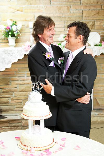 Wesele gej para dwa przystojny mężczyzn Zdjęcia stock © lisafx