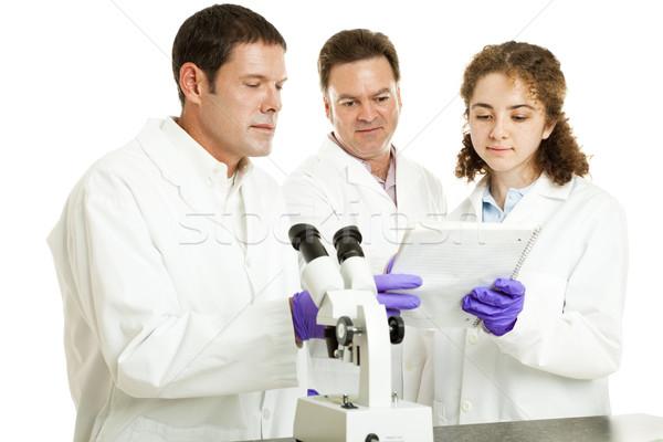 Tudósok olvas teszteredmények csoport orvosok olvas Stock fotó © lisafx