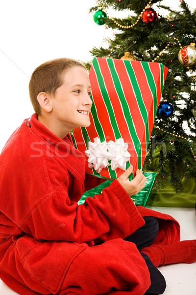 Christmas dar godny podziwu mały chłopca odgadnąć Zdjęcia stock © lisafx