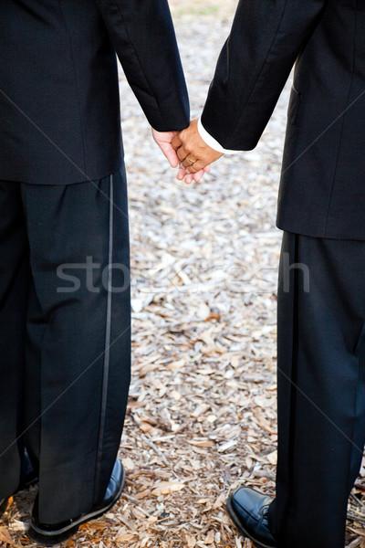 Gay holding hands primo piano view Coppia sposato Foto d'archivio © lisafx