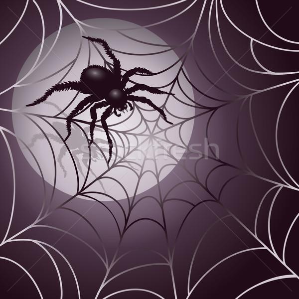 Nagy ijesztő pók pókháló terv 10 Stock fotó © Lisann