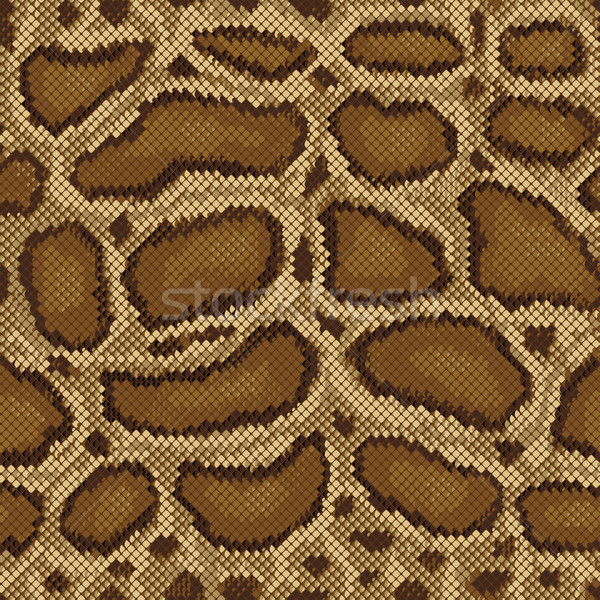 Python Pattern Stock photo © Lisann