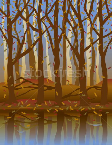 Cztery pory roku jesienią drzew streszczenie charakter pozostawia Zdjęcia stock © Lisann